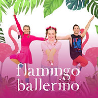 Flamingo Ballerino.jpg