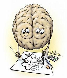 Правое и левое полушария мозга