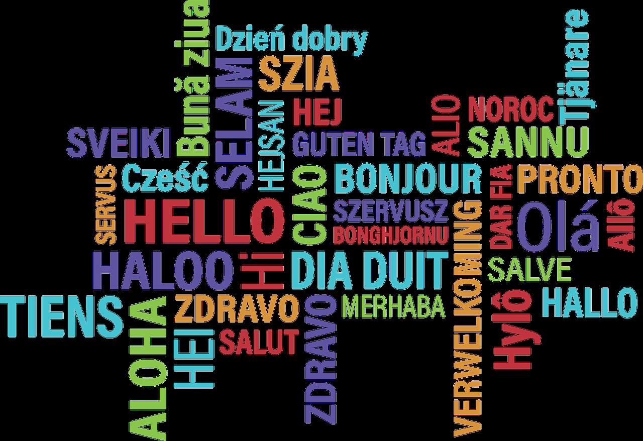 Homeschool Teacher: Foreign Language