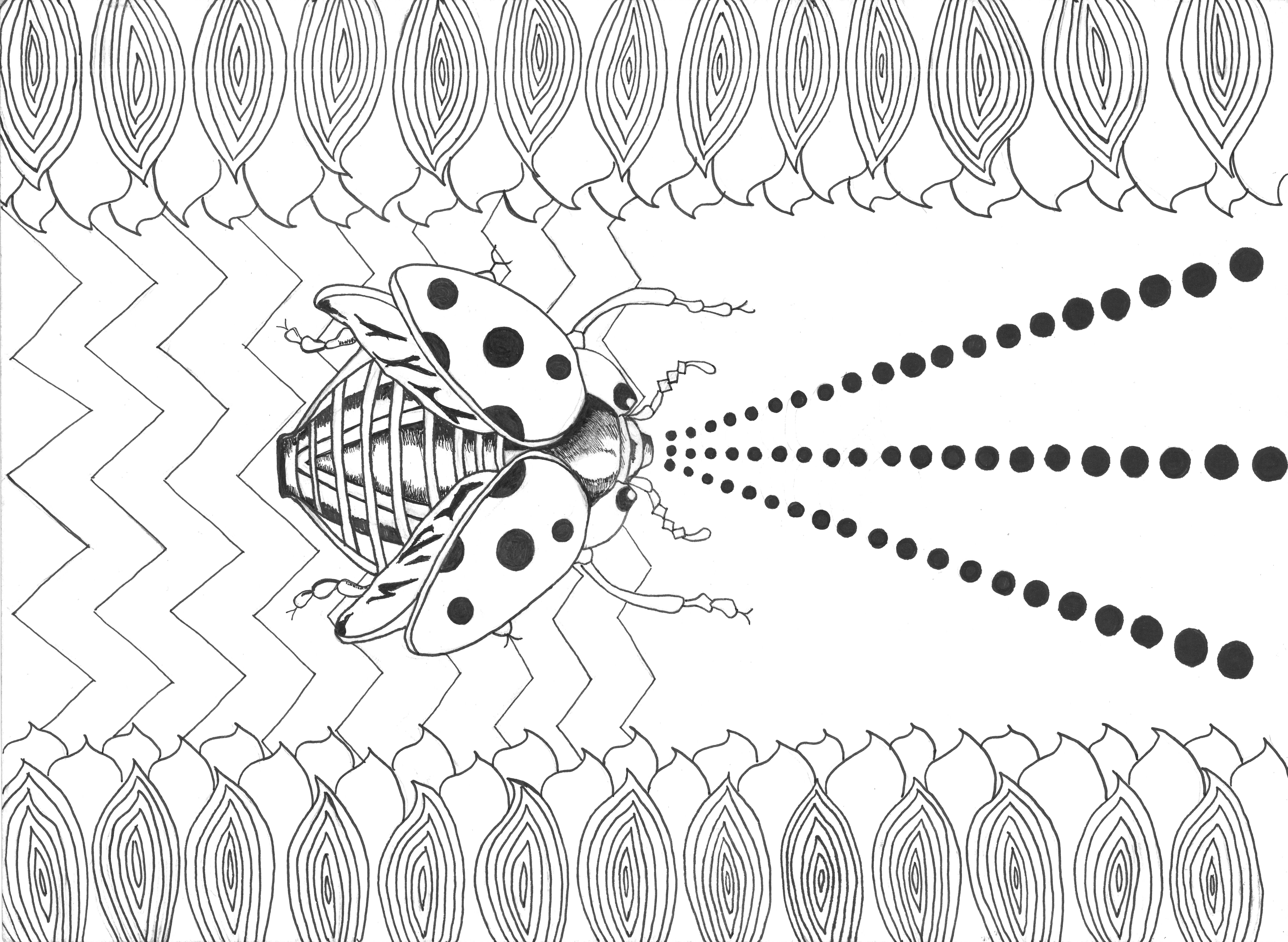 Lady Laser Bug