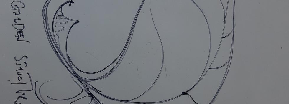 Leaf canopy drawing