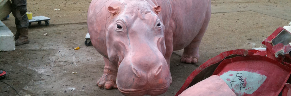 Adult hippo