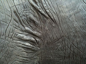 elephant texture.JPG