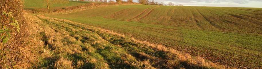 Buffer Strip - Water friendly farming re