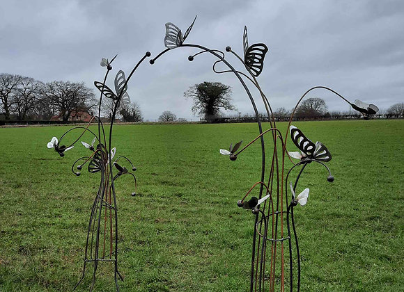 Butterfly Arch