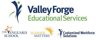 vg_program_2color_logo.jpg