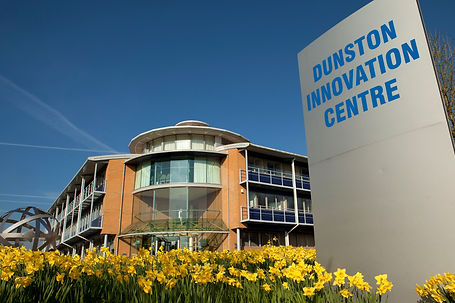 Dunston_Innovation_Centre_Daffodils.jpg