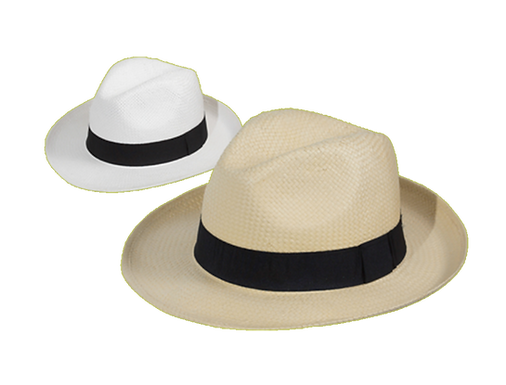 Classic Hats Collection