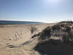 Algarve-plage-sauvage-Ria-Formosa