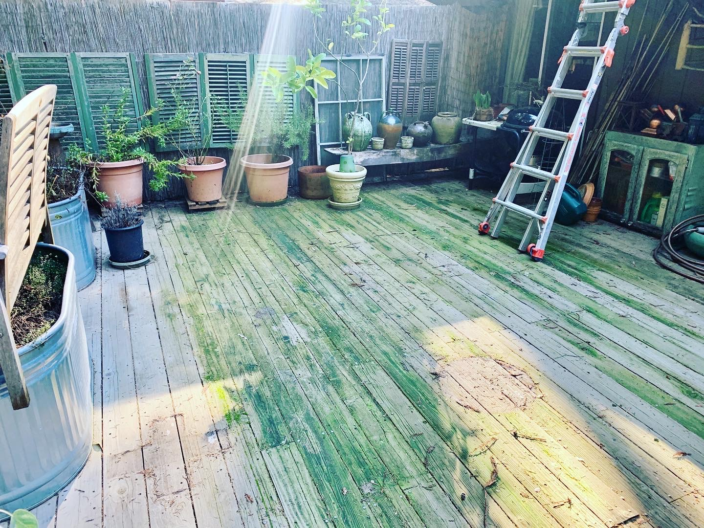 Deck Cleaning/Moss Removal