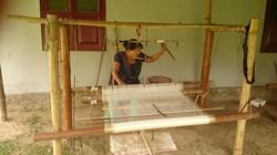 1505-Kaziranga-Diphlu weaver