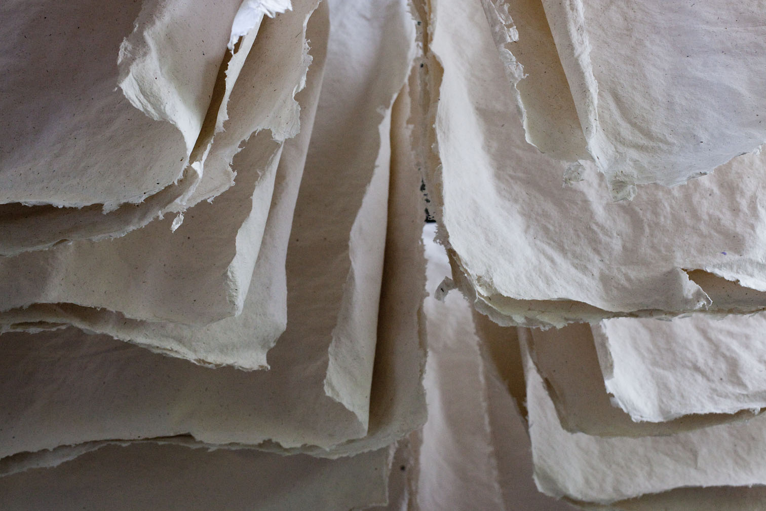 Naturally dried paper