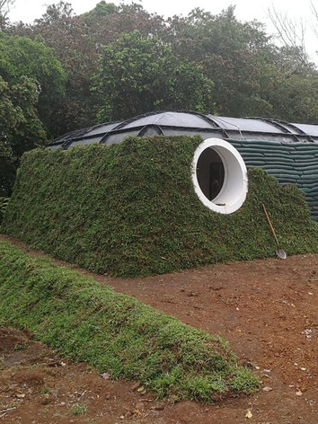 GREEN ROOF BUBBLE HOUSE 2020