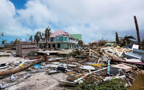 Cyclones_GREEN BUBBLE_2020