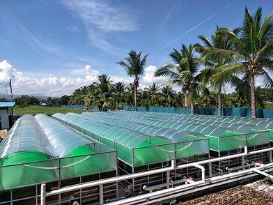 Large Unité de production de Biogas