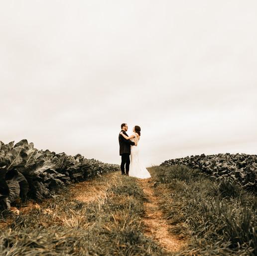 Coral & Kyle /  Fall Wedding