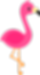 Flamingo_01_edited.png