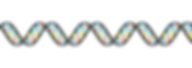 3D DNA double helix