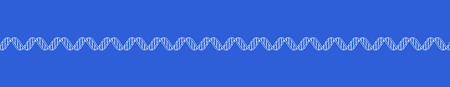 Blueprint of DNA double helix