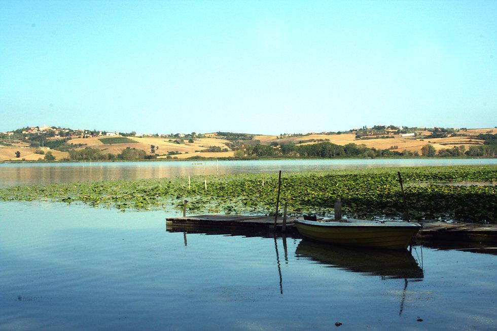 Lago di Chiusi.jpg