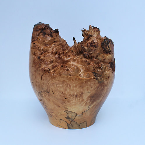 Horse Chestnut Hollow Form