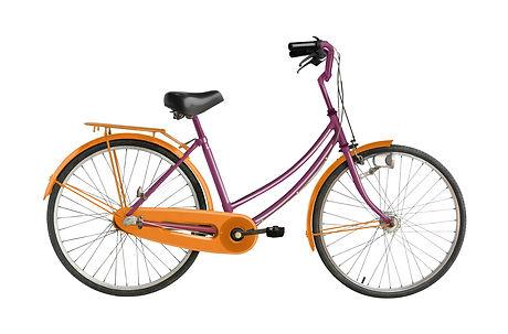 chari cycles.jpg
