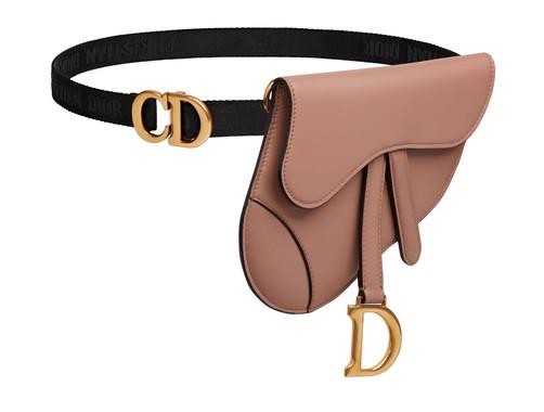 Saddle bag Dior.jpg