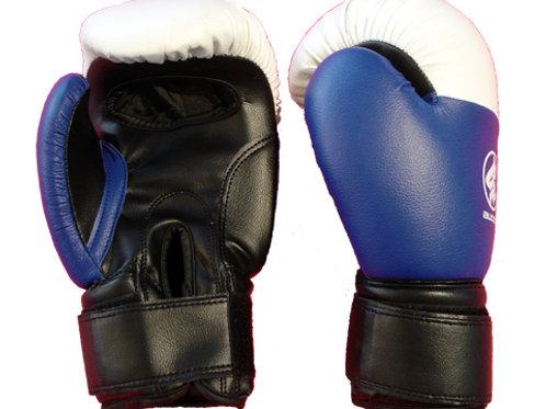 Gants de boxe Yoseikan Budo