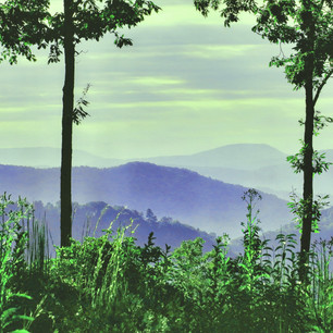 Jumpseed Vista