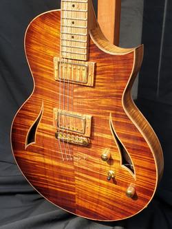 Octigan Semi Acoustic