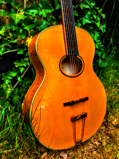 Scharpach Opus 5 Oval Archtop