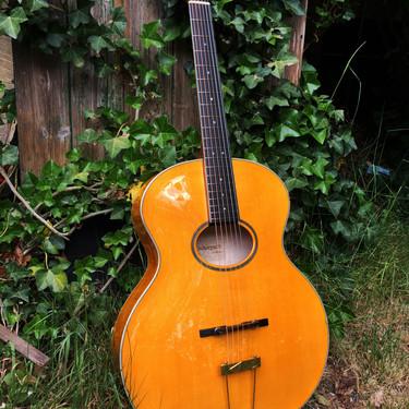 Opus Acoustic