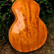 OPus Acoustic back