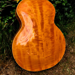 OPus Acoustic back