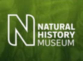 natural-history-museum.jpg