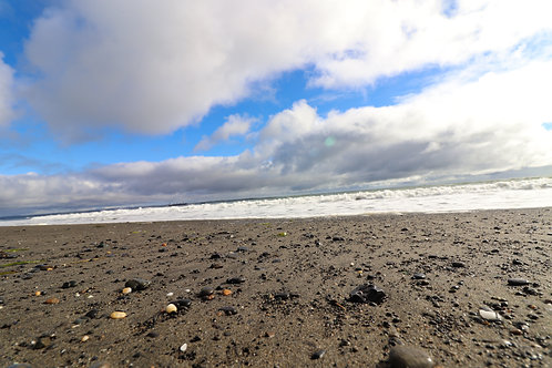 Beach of Ocean Shores