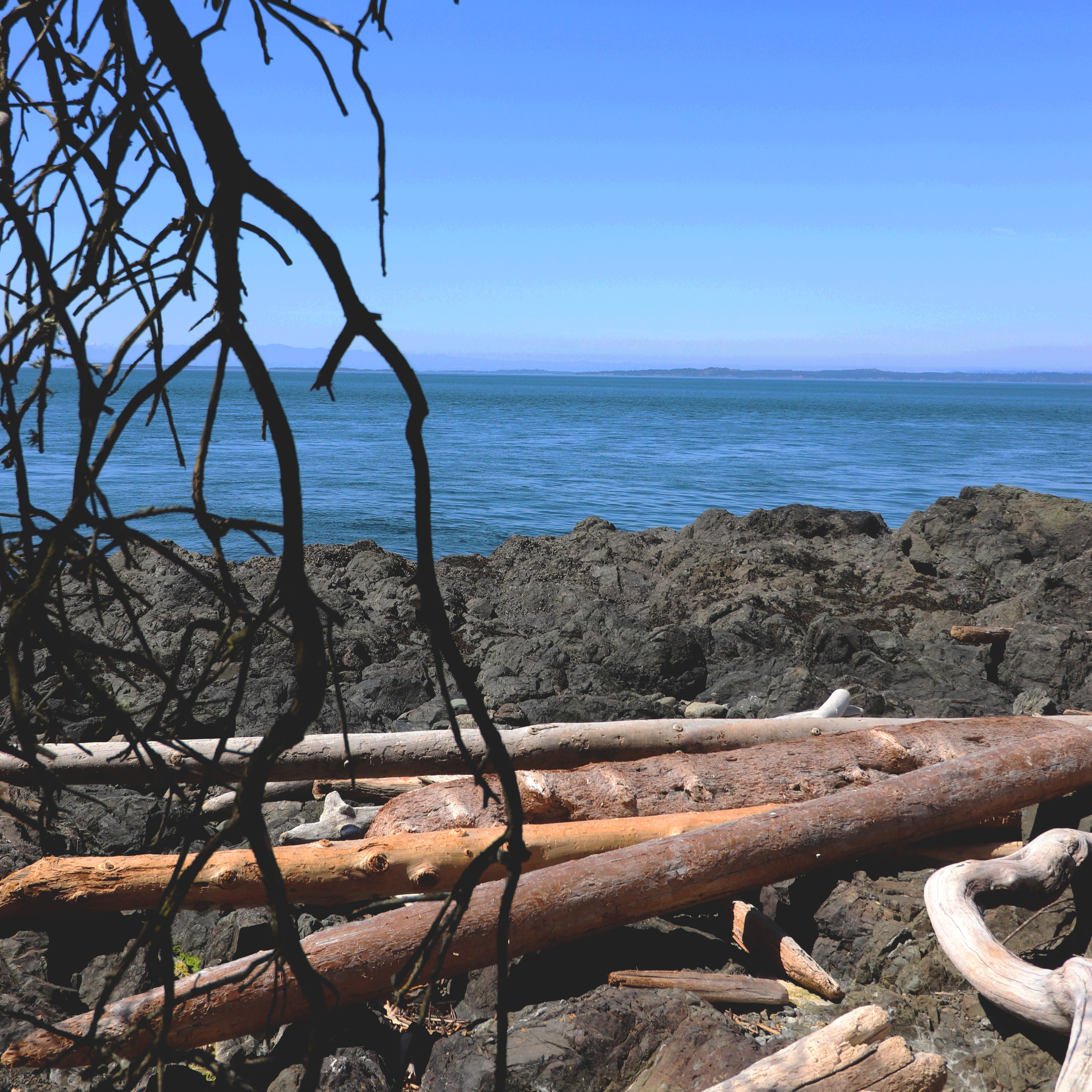 Tumble and Tides