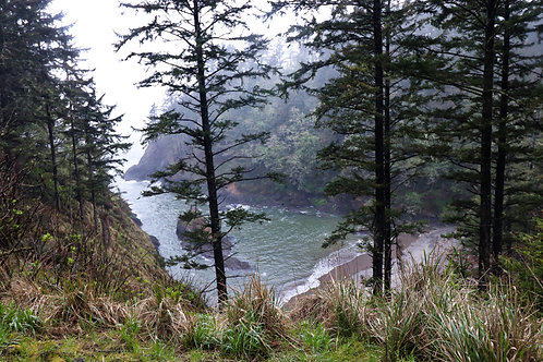 Cape Disappointment III