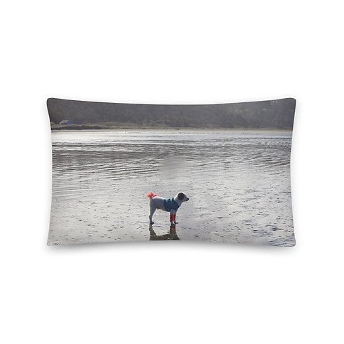 Basic Dog On Beach Pillow