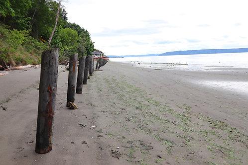 DashPoint Beach