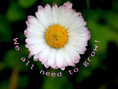 Macro: Simple Flower