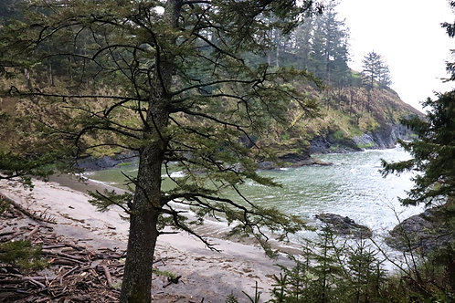 Cape Disappointment II
