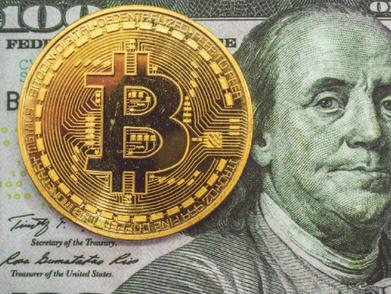 Crypto 101: Conceptos Básicos de las Criptomonedas
