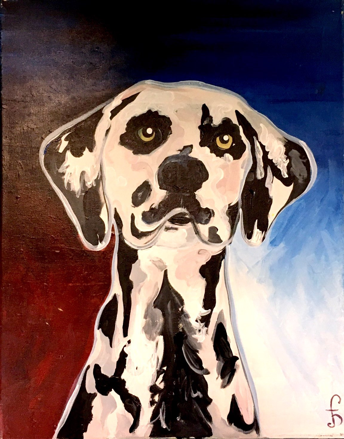 Regal Dalmation