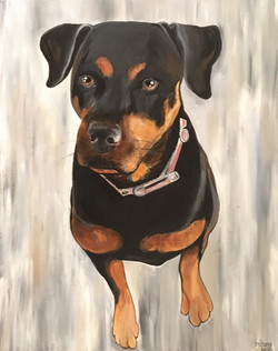 Rottweiler Commission