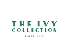 The Ivy Group Web