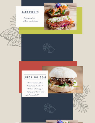 Email Shot design for a healthy food cafe based in Ireland.