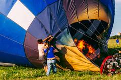 fly-2505.jpg