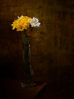 Alexandra_Naumova_04593035_PH355_FlowerStillLife.jpg