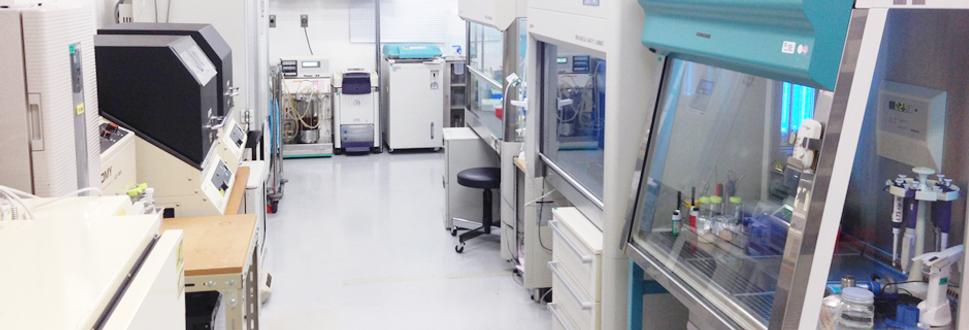 GSPエンタープライズ, 抗体ライブラリー, 抗体遺伝子, 研究開発, Fab型抗体, ヒト型人工抗体ライブラリー